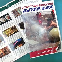 DSA Visitors Guide